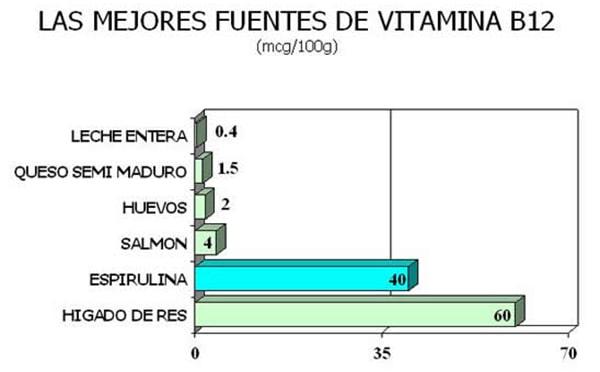 La espirulina entre las mejores fuentes de vitamina B12