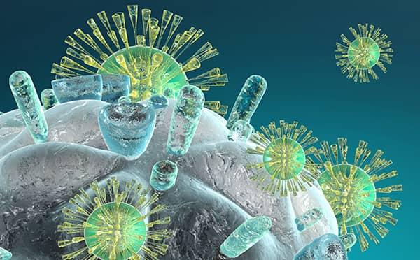 La espirulina previene la creación de células tumorales