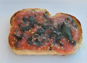 tostada_tomate